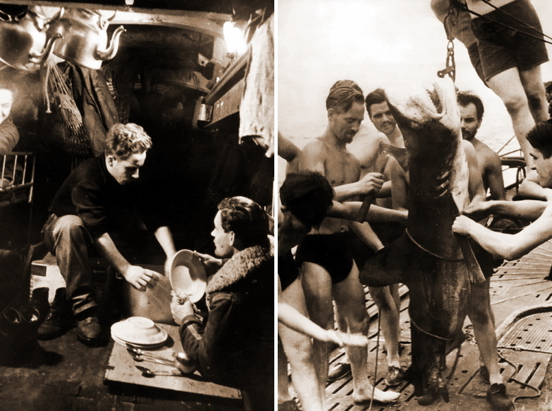 "​Washing plates on a submarine after a meal (on the left). Looking at facial hair of the crew, patrol lasts more than a week, and no one against adding fish to menu. Cutting shark meat on a deck (on the right) - What the ""Dönitz' grey wolves"" were eating? 