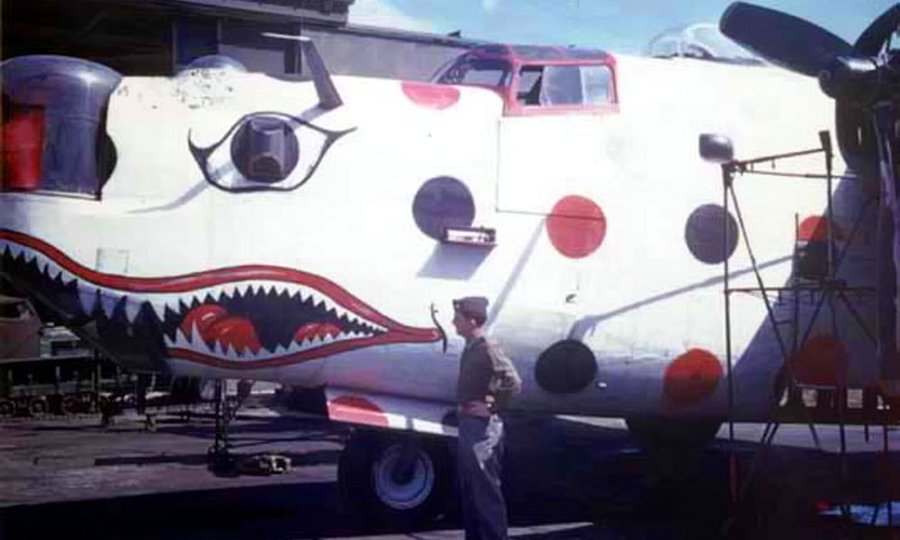 "​The nose of the «Spotted Ass Ape."" Another nickname for this aircraft was ""Wonderbread"". Under this brand name on the US market first appeared the type of bread that we are all familiar with now – cut in slices. Its packaging was covered with multi-colored dots - Highlights for Warspot: Judas goats and polka dot 